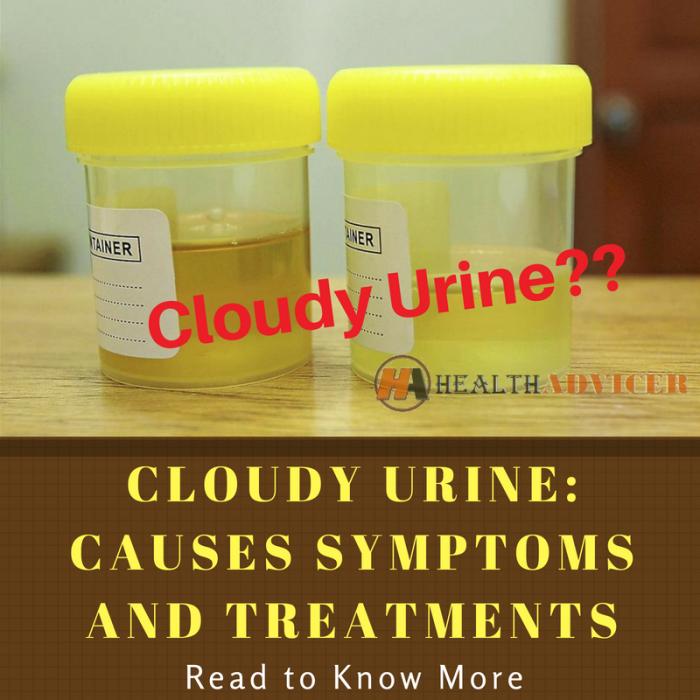 Cloudy Urine