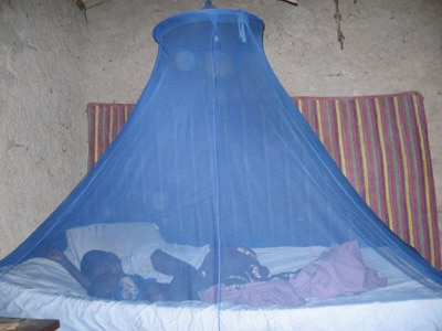 Use Mosquito Nets