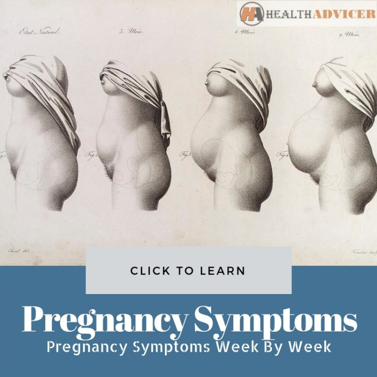 Pregnancy Symptoms Week By Week