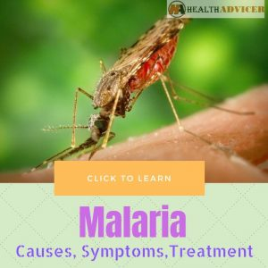 Malaria Causes Treatment