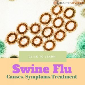 H1N1 Flu Virus Swine Flu